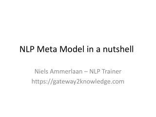 NLP Meta Model in a nutshell