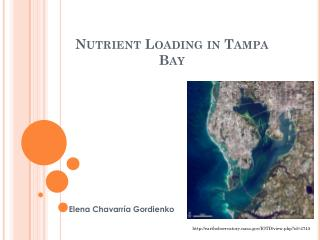 Nutrient Loading in Tampa Bay
