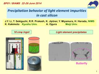 Precipitation  behavior of light element impurities in cast silicon