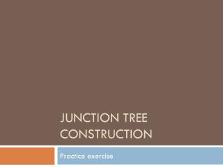 Junction Tree Construction