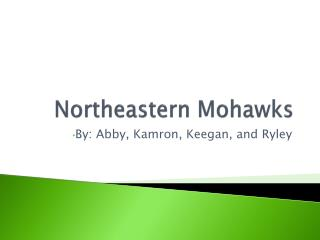 Northeastern Mohawks
