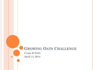 Growing Oats Challenge