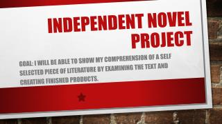 Independent Novel Project