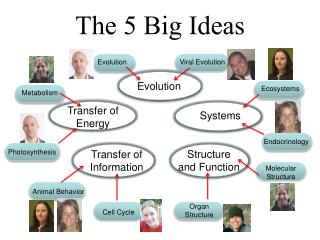 The 5 Big Ideas