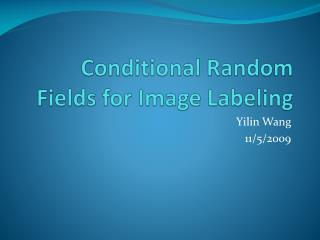 Conditional Random Fields for Image Labeling