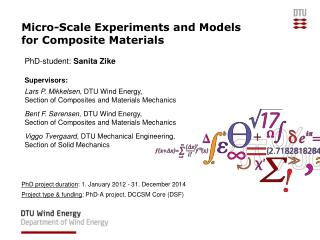 Micro-Scale Experiments and Models for Composite Materials