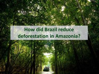 How did Brazil reduce deforestation  in  Amazonia ?