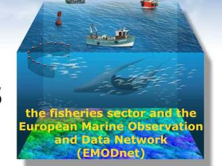 the  fisheries sector and the European Marine Observation and Data Network  ( EMODnet )