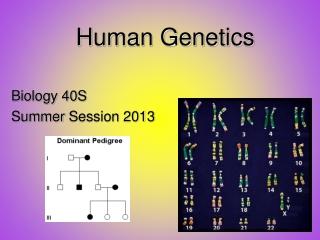 Human Genetics: Patterns of Inheritance for  Human Traits