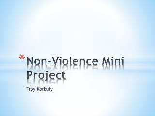 Non-Violence Mini Project