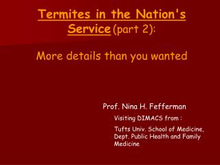 Termites in the Nations Service part 2:   More details than you wanted