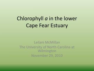 Chlorophyll  a  in the lower Cape Fear Estuary