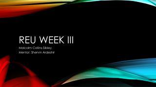 REU Week III