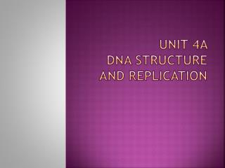 Unit 4A  DNA Structure and replication