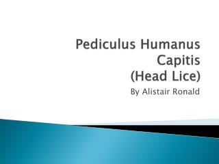 Pediculus Humanus Capitis (Head Lice)