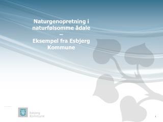 Naturgenopretning i naturfølsomme ådale  –  Eksempel fra Esbjerg Kommune