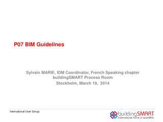 P07 BIM Guidelines