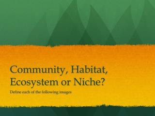 Community, Habitat, Ecosystem or Niche?