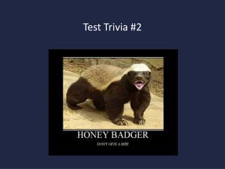 Test Trivia #2