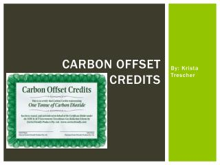 Carbon Offset credits