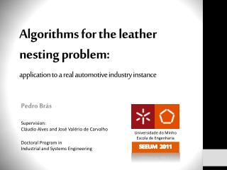 Algorithms for the leather nesting problem: application to a real automotive industry instance