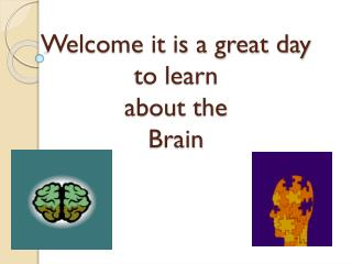 Welcome it is a great day to learn  about the  Brain