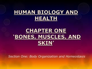 Human Biology and Health Chapter  One ' Bones, Muscles, and  Skin '
