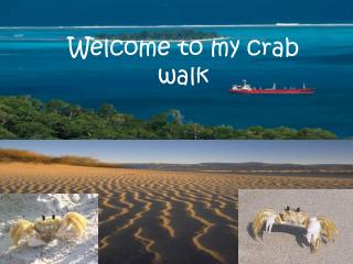 Welcome to my crab walk