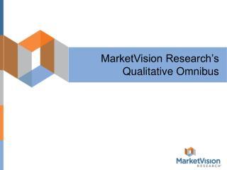 MarketVision Research�s Qualitative Omnibus