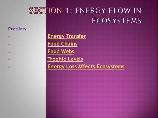 Section 1:  Energy Flow in Ecosystems