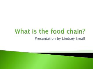 What is the food chain?
