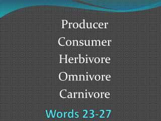 Words 23-27