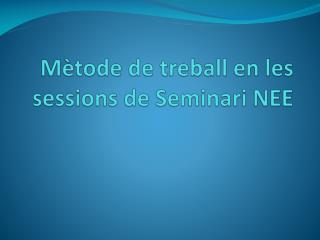 M�tode  de  treball  en les  sessions  de  Seminari  NEE