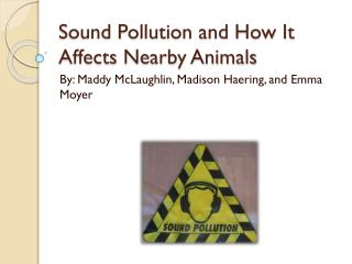Sound Pollution and How It  A ffects  N earby Animals