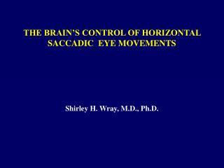 THE BRAIN S CONTROL OF HORIZONTAL SACCADIC  EYE MOVEMENTS