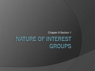 Nature of Interest Groups