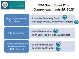 SIM Operational Plan Components :  July 29, 2013