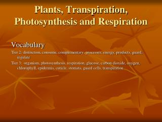 Plants, Transpiration, Photosynthesis and Respiration