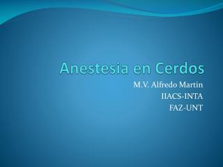 Anestesia en Cerdos