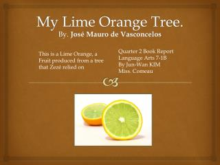 My Lime Orange Tree.
