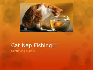 Cat Nap Fishing!!!