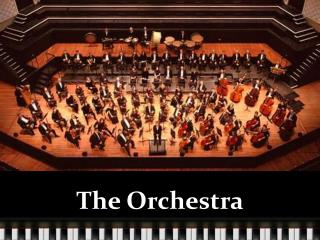 The Orchestra