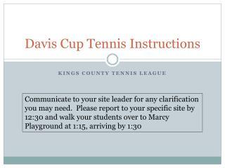 Davis Cup Tennis Instructions