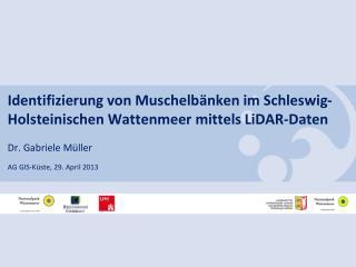 Identifizierung von Muschelbänken im Schleswig-Holsteinischen Wattenmeer mittels  LiDAR -Daten