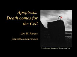 Apoptosis: Death comes for the Cell  Joe W. Ramos jramoscrch.hawaii