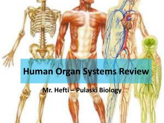 Human Organ Systems Review