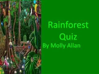 Rainforest Quiz