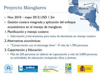 Proyecto Manglares
