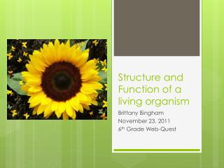 Structure and Function of a living organism