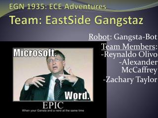 EGN 1935: ECE  Adventures Team:  EastSide Gangstaz